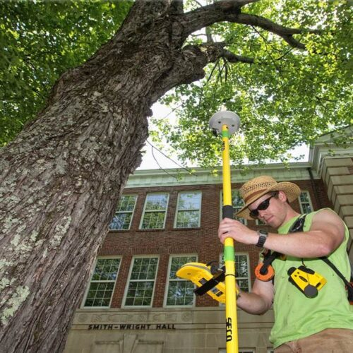 Arborist Consultations-Carrollwood FL Tree Trimming and Stump Grinding Services-We Offer Tree Trimming Services, Tree Removal, Tree Pruning, Tree Cutting, Residential and Commercial Tree Trimming Services, Storm Damage, Emergency Tree Removal, Land Clearing, Tree Companies, Tree Care Service, Stump Grinding, and we're the Best Tree Trimming Company Near You Guaranteed!