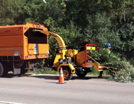 Commercial Tree Services-Carrollwood FL Tree Trimming and Stump Grinding Services-We Offer Tree Trimming Services, Tree Removal, Tree Pruning, Tree Cutting, Residential and Commercial Tree Trimming Services, Storm Damage, Emergency Tree Removal, Land Clearing, Tree Companies, Tree Care Service, Stump Grinding, and we're the Best Tree Trimming Company Near You Guaranteed!
