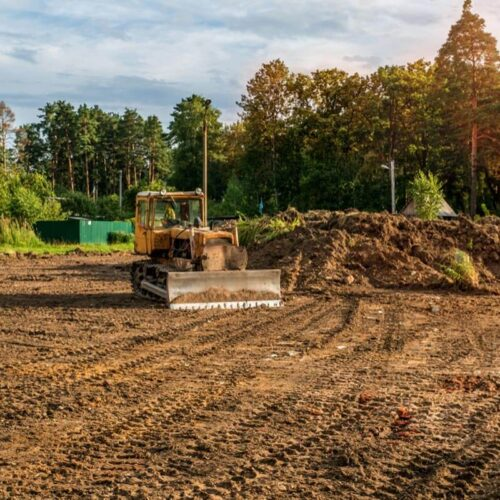 Land Clearing-Carrollwood FL Tree Trimming and Stump Grinding Services-We Offer Tree Trimming Services, Tree Removal, Tree Pruning, Tree Cutting, Residential and Commercial Tree Trimming Services, Storm Damage, Emergency Tree Removal, Land Clearing, Tree Companies, Tree Care Service, Stump Grinding, and we're the Best Tree Trimming Company Near You Guaranteed!